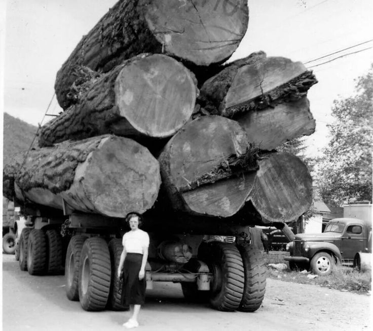 Three Log Load ~ Best some pnw history images on pinterest journals