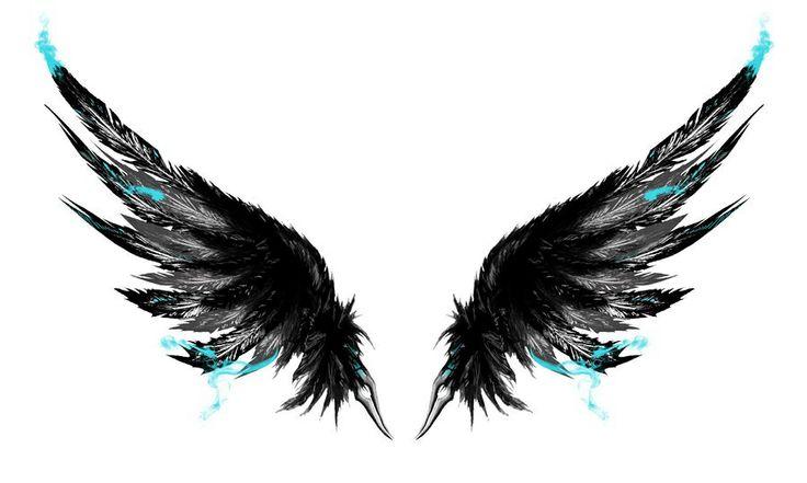 Cool bird wings