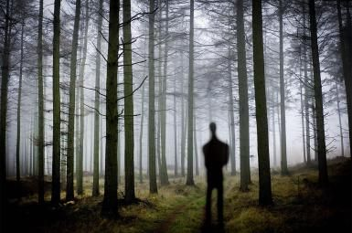 Who's Afraid of The Slender Man?