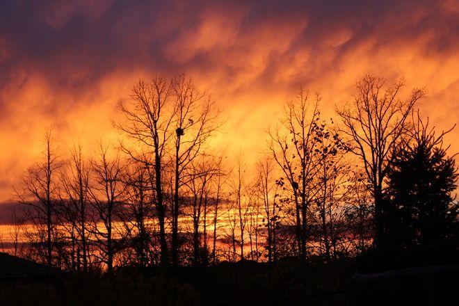 Fiery sky // Petrolia, ON
