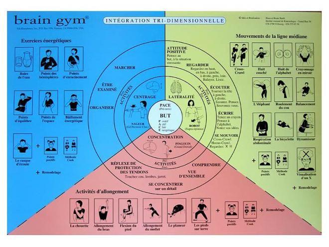 La Gymnastique du Cerveau pour un bon apprentissage