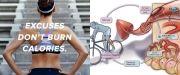 Μια ομάδα από το Πανεπιστήμιο της Φλόριντα ανακάλυψε το πώς η ορμόνη Ιρισίνη βοηθά να μετατραπούν οι θερμίδες που ειναι αποθηκευμένες στο...