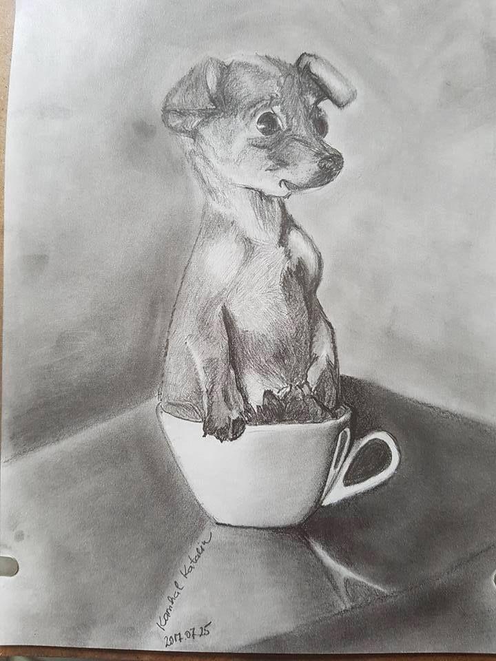 Kamhal Katalin rajza