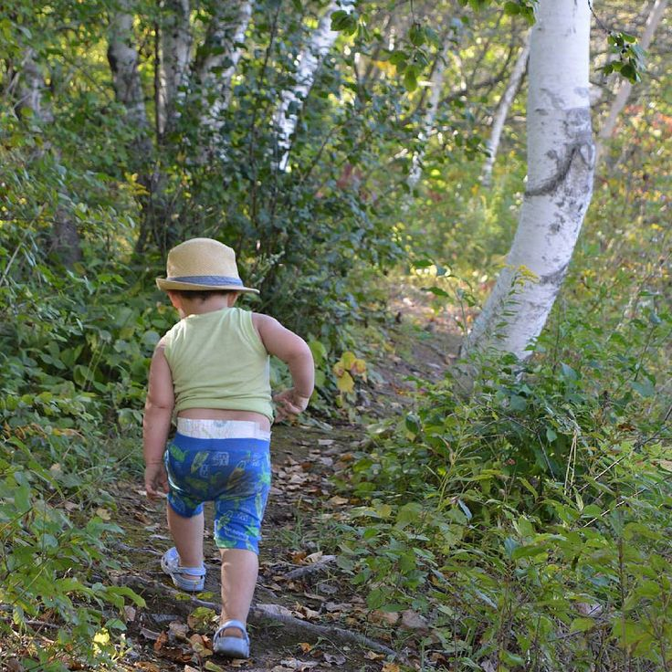 #hiking #walking #strolling #whitebirch #trees #forest #toddler #child #kid #birch #GrandRiver #trail #brantford #mountpleasant #brantcounty #ontario #canadaThese are my personal photos from Flickr!
