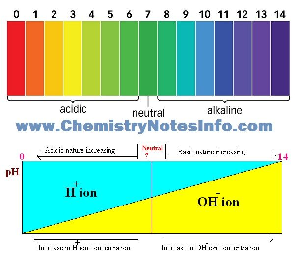 Ph Scale For Acid Neutral And Alkaline Or Base And Acid Base