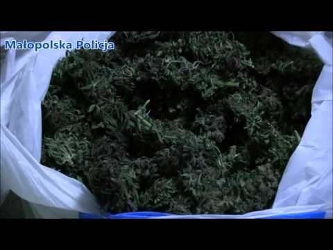 Policjanci zlikwidowali arsenał broni oraz przejęli narkotyki