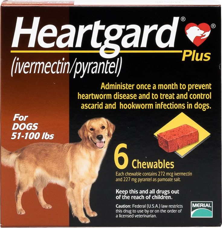 Heartgard Plus Chewable Tablets for Dogs, 51100 lbs, 6