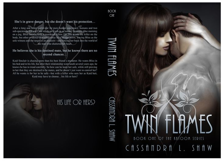 Twin Flames  Katoom Series Paranormal Romantic Suspense out July 25th 2015