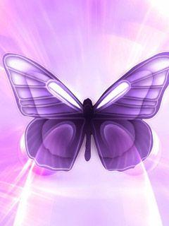 Purple Butterfly Background   Butterfly Wallpaper hd: Purple Butterfly Wallpaper