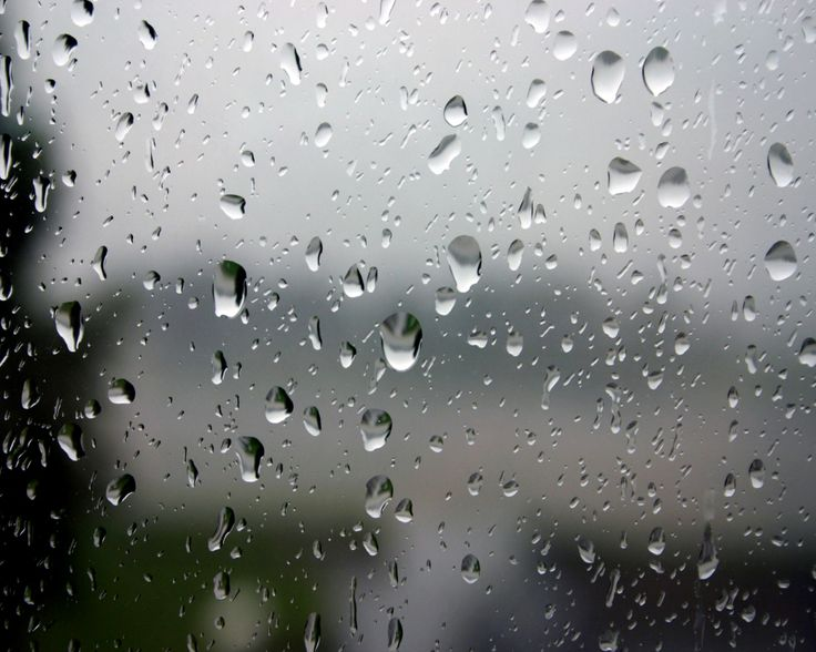 ever watched a rain drop slide down your window?