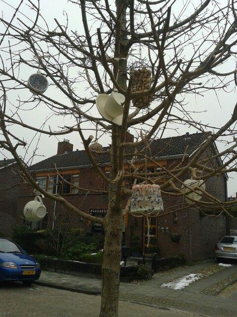 De vogel snoepboom is open