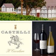 Castelli Estate Our winemakers' philosophy it to produce wines that we feel proud to put on the table with the Castelli name on the bottle. With Tudor style architecture, stone walls, grand arches in our underground barrel room and our acutely pitched winery roof, the facility evinces beauty to match its functionality. A capacity of 500 tonnes and the industry's most advanced winemaking equipment culminate to make the Castelli Estate winery a world class, state-of-the-art facility.