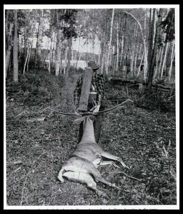 Vintage Archery Equipment