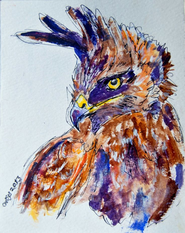 Long-crested Eagle - watercolour &ink
