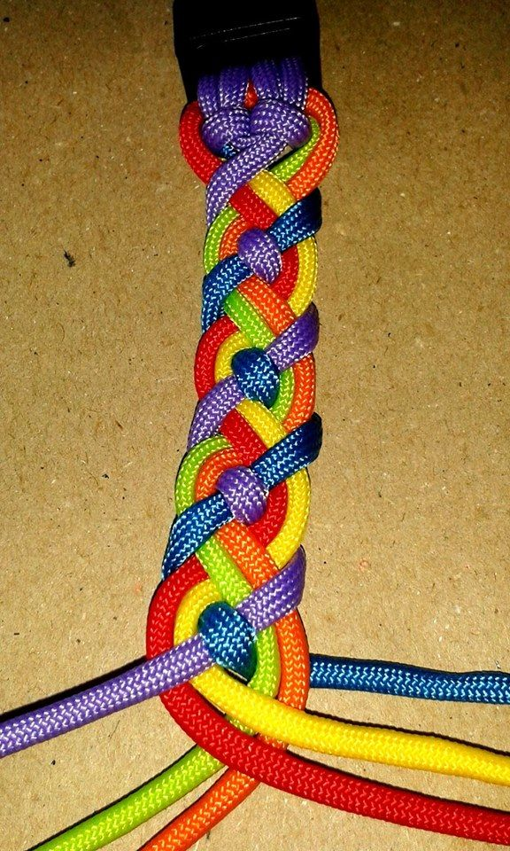 Paracord                                                       …