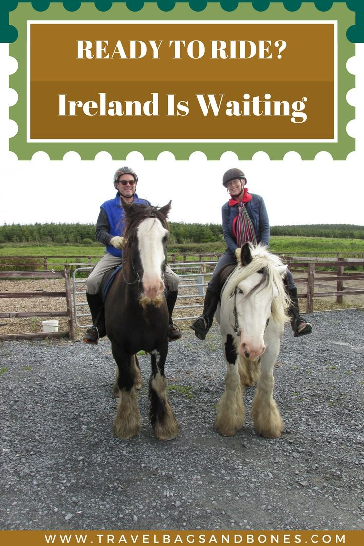 Head to Ireland and ride these gentle giants!