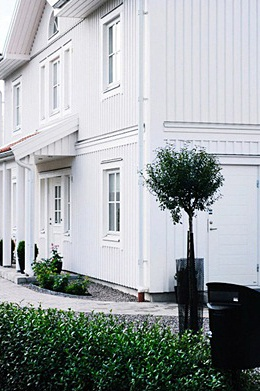 vitt hus