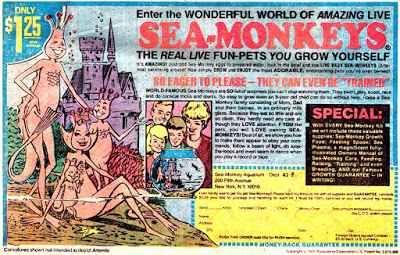 """SEA-MONKEYS, le scimmie di mare - strambo """"giocattolo"""" anni '70 In America si videro già dagli anni '50, ma il fenomeno esplose negli anni '70 e presto arrivò anche da noi in Italia. Le Sea-Monkeys, le scimmiette di mare.  Bastava seguire le semplici istruzioni #seamonkeys #scimmiedimare"""
