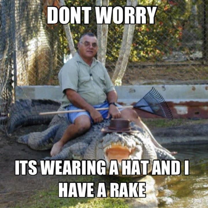 meanwhile in Australia.... croc safety