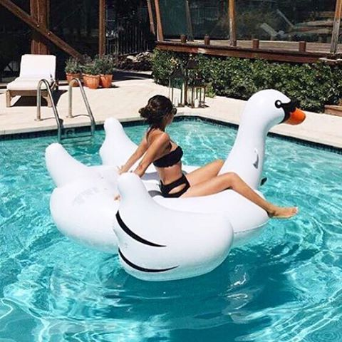 Planing for vacations? Events? Pool party? Check us out!  We are here to provide quality rental service of giant pool float. Flamingo & Swan Giant Pool Float. ☎️wechat/watsapp us to make bookings 018 2886452 #swangoals #poolfloat #beachlife #beach #swan #flamingo