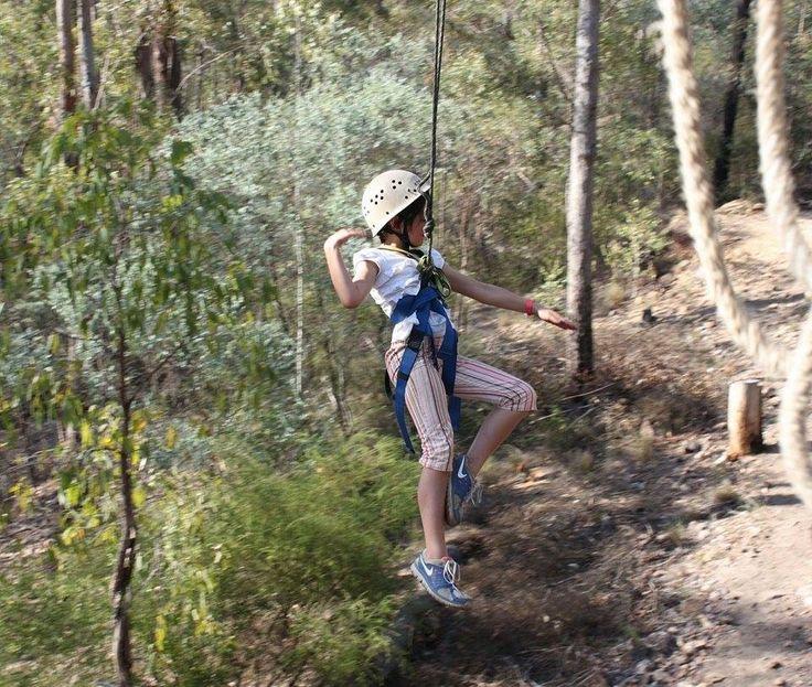 Flying Fox Murphys Creek Escape