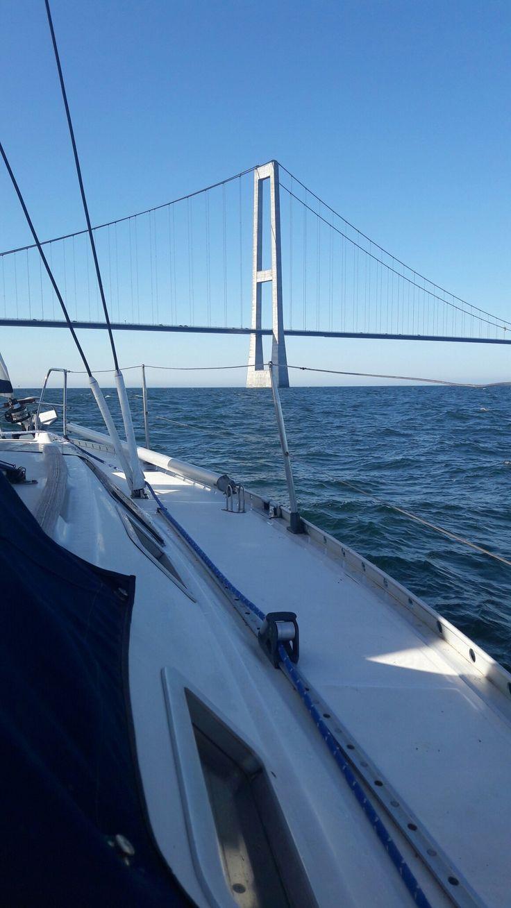 Sailing under the Great Belt bridge.