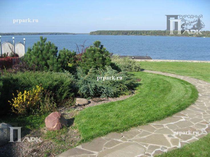 фото участкка,проектирование сада, озеленение, фото садов подмосковья, сад на склоне   Природный Парк Дизайн