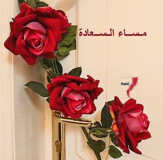 على أبواب المساء همسات تغازل الأفكار و ترتيلة الأمل تراقص الأزهار و تحلو الإبتسامة على لحن نبض Good Morning Photos My Flower Beautiful Moon