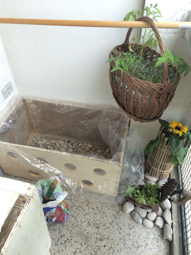 5 Working...Put rocks at the botom of the box, then sand and soil. Plant some strawberries .