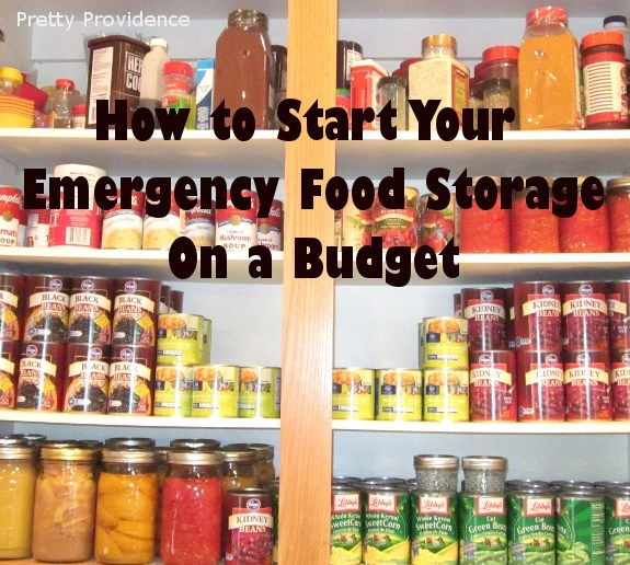 How to start your emergency food storage on a budget! Everyone should have at least a little food storage for natural emergencies, job loss, or other financial stresses. Don't be discouraged, start today!