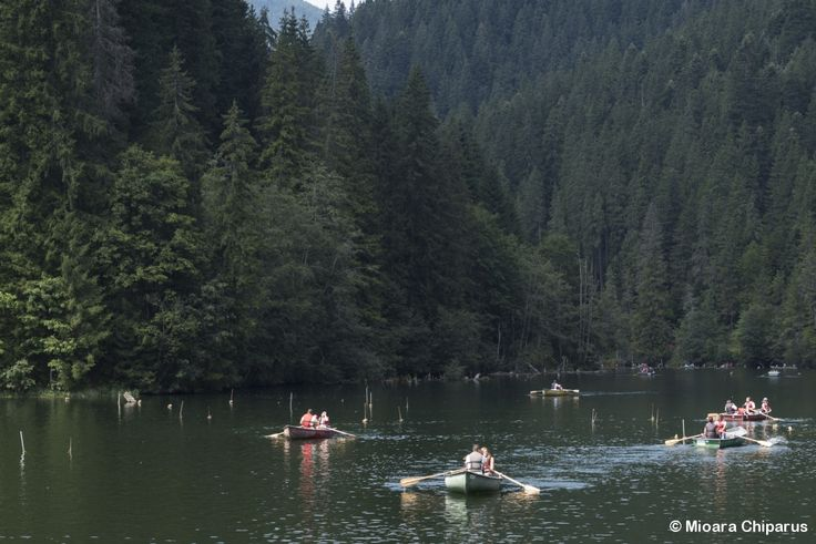 Lacul Rosu at Lacul Rosu by Mioara Chiparus