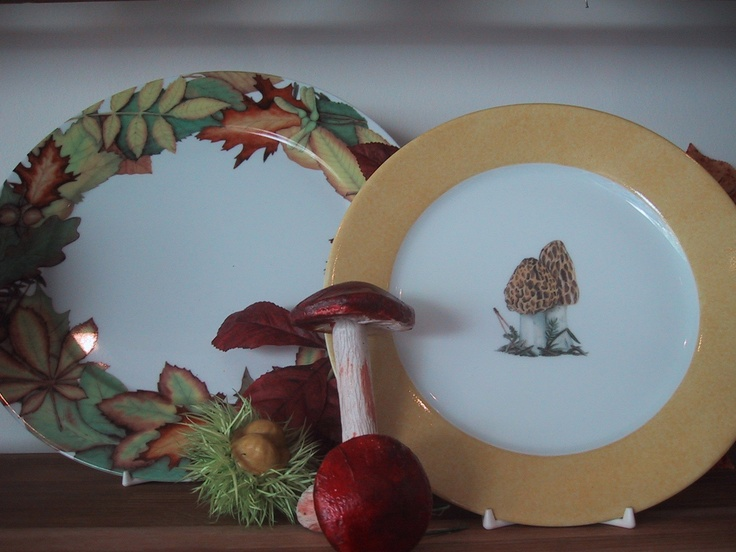 wood, forest , mushroom... dinnerplates