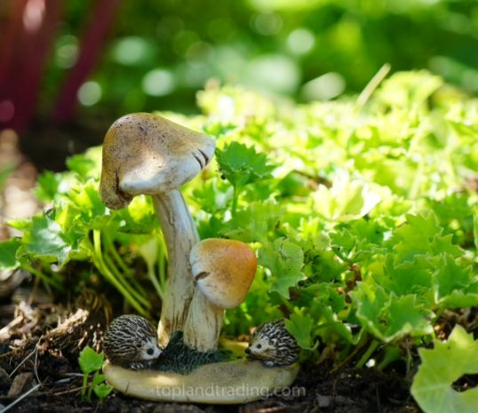 Toadstool with baby hedgehogs 4406