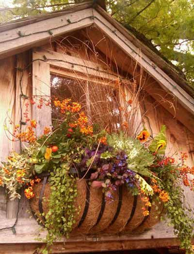 Fall Window Box Planter at Chalet Nursery