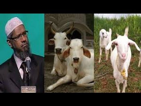 Dr.Zakir Naik~ Why Muslims Kill Animals Superb & Best Answer ~ 2016