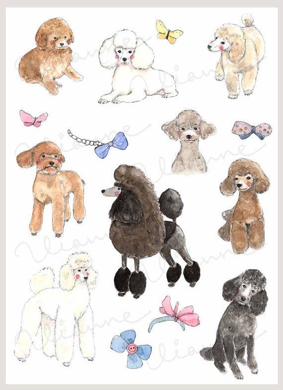CLIP ART Watercolor Poodles & Hair Bows Set. 15 by Vianneart