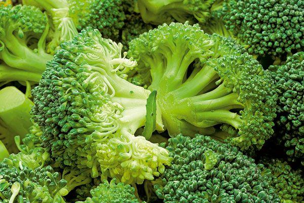 Ako na pestovanie zeleniny v chladných mesiacoch | UROBSISAM.sk