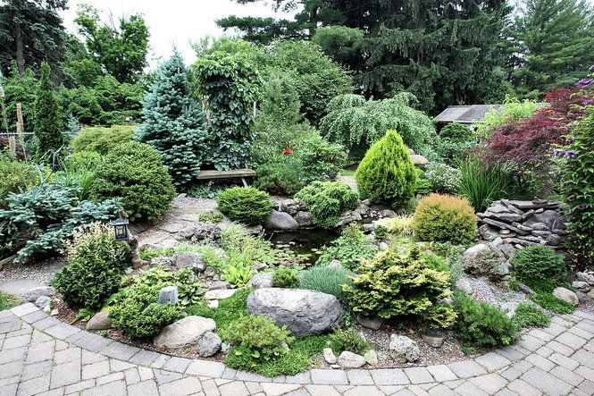 Dwarf Conifer Garden In Dewitt NY CNY Homes Pinterest Gardens