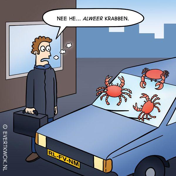 Het was weer zover vanochtend... #cartoon - Evert Kwok