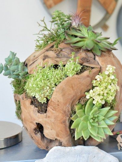Buy or DIY: Outdoor Square Planters | Centsational Girl