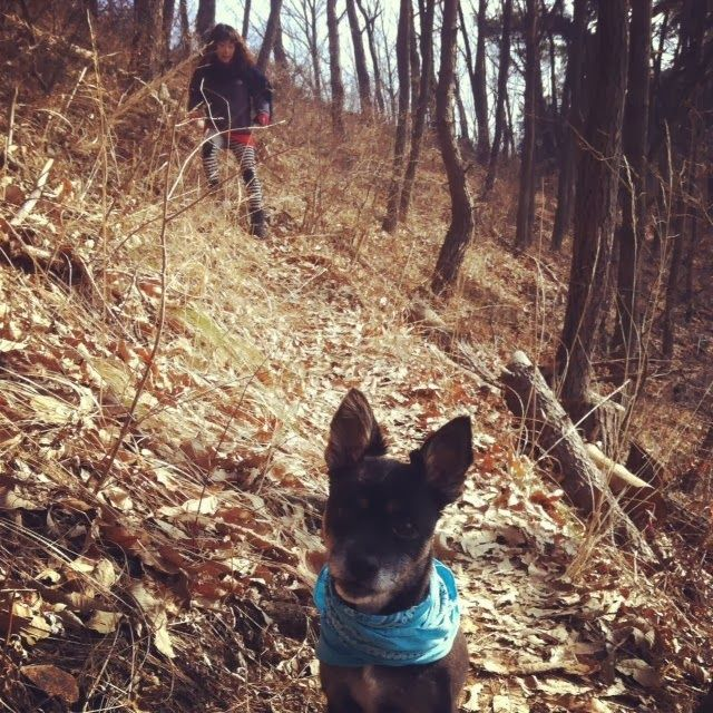 The Damyang House - winter hiking