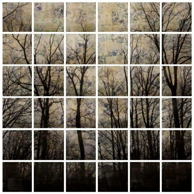 Trees, 2014, mixed media on wood, cm 184x184