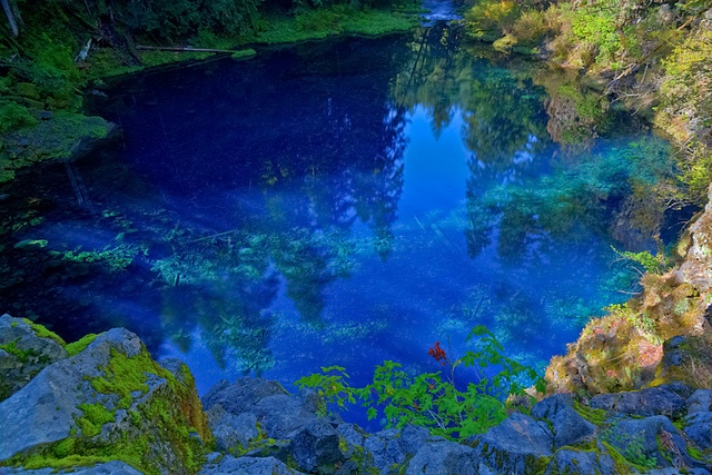 17 Best Images About Opal Creek Falls Oregon On Pinterest Picnic Spot National Forest And