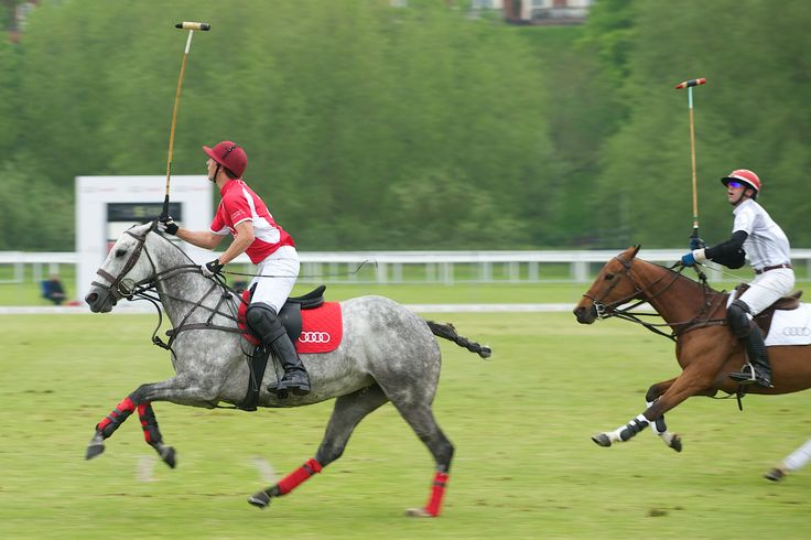 George Meyrick at the Audi Polo Challenge 2013 - Chester Racecourse Polo Club