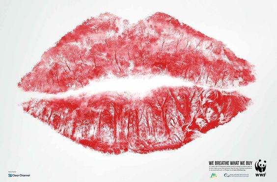 WWF Haze Campaign by Matthew Crescenzo