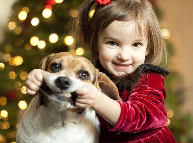 Come on puppy, smile. I SAID SMILE.