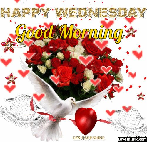 Happy Wednesday Good Morning Doves And Hearts .