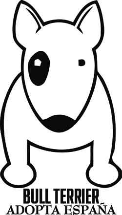 bull terrier logo - Google Search