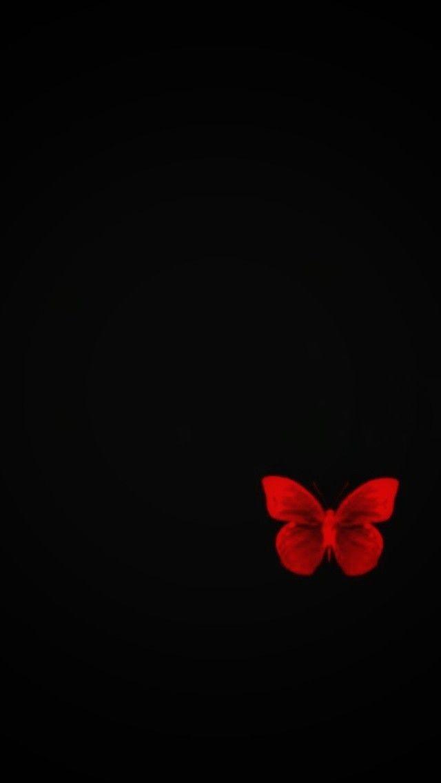 Pin By Ssadsqtan On Fotograf Butterfly Wallpaper Backgrounds Black Background Wallpaper Flowery Wallpaper