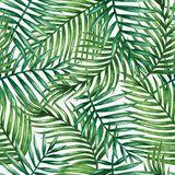 Tropisches Muster - Download von über 41 Million Vorrat-Fotos der hohen Qualität, Bilder, Vectors. Melden Sie sich FREI heute an. Bild: 50207261